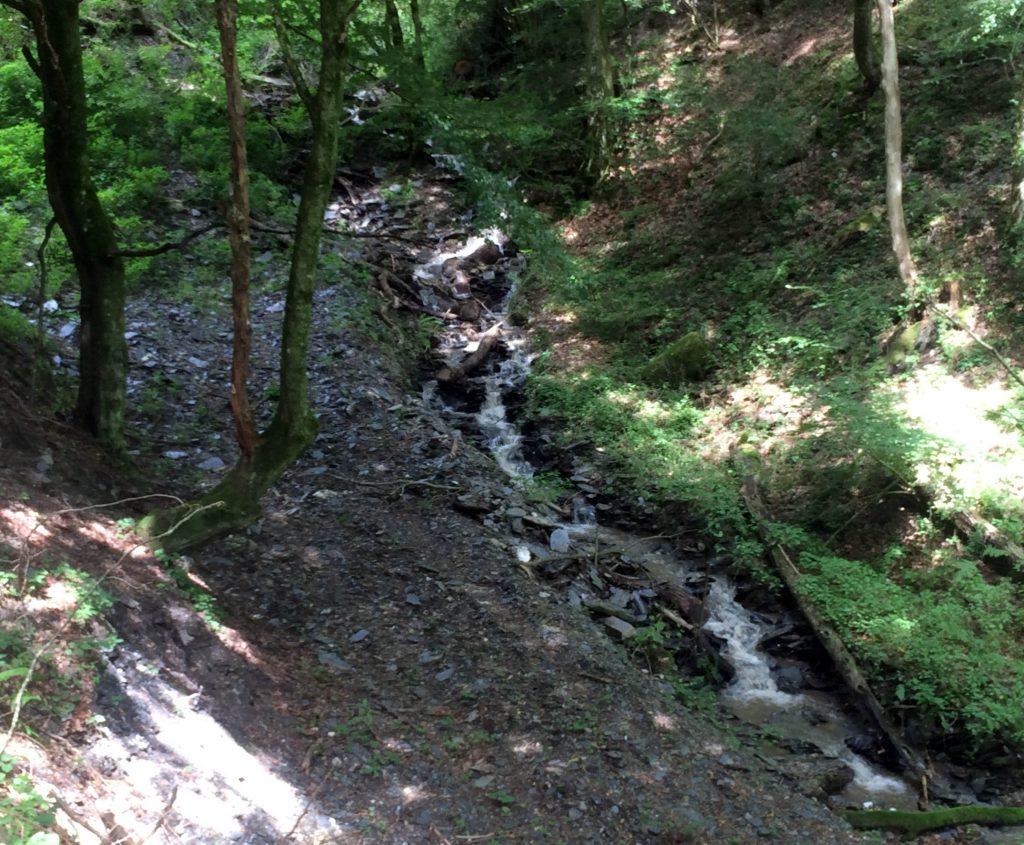 WispertalSteig - Wander-Heimat | Wander-Heimat